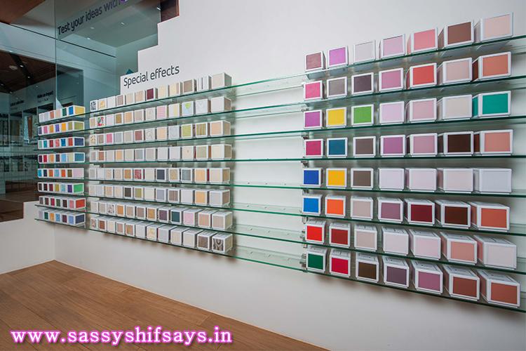 Asian Paints (10)