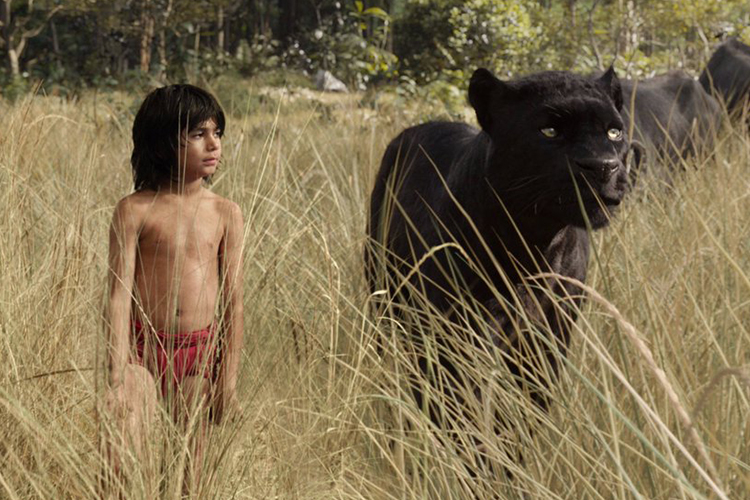 The Jungle Book Film (2)
